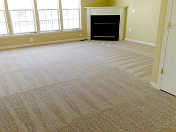 Beautiful carpet cleaning